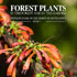 Forest plants book